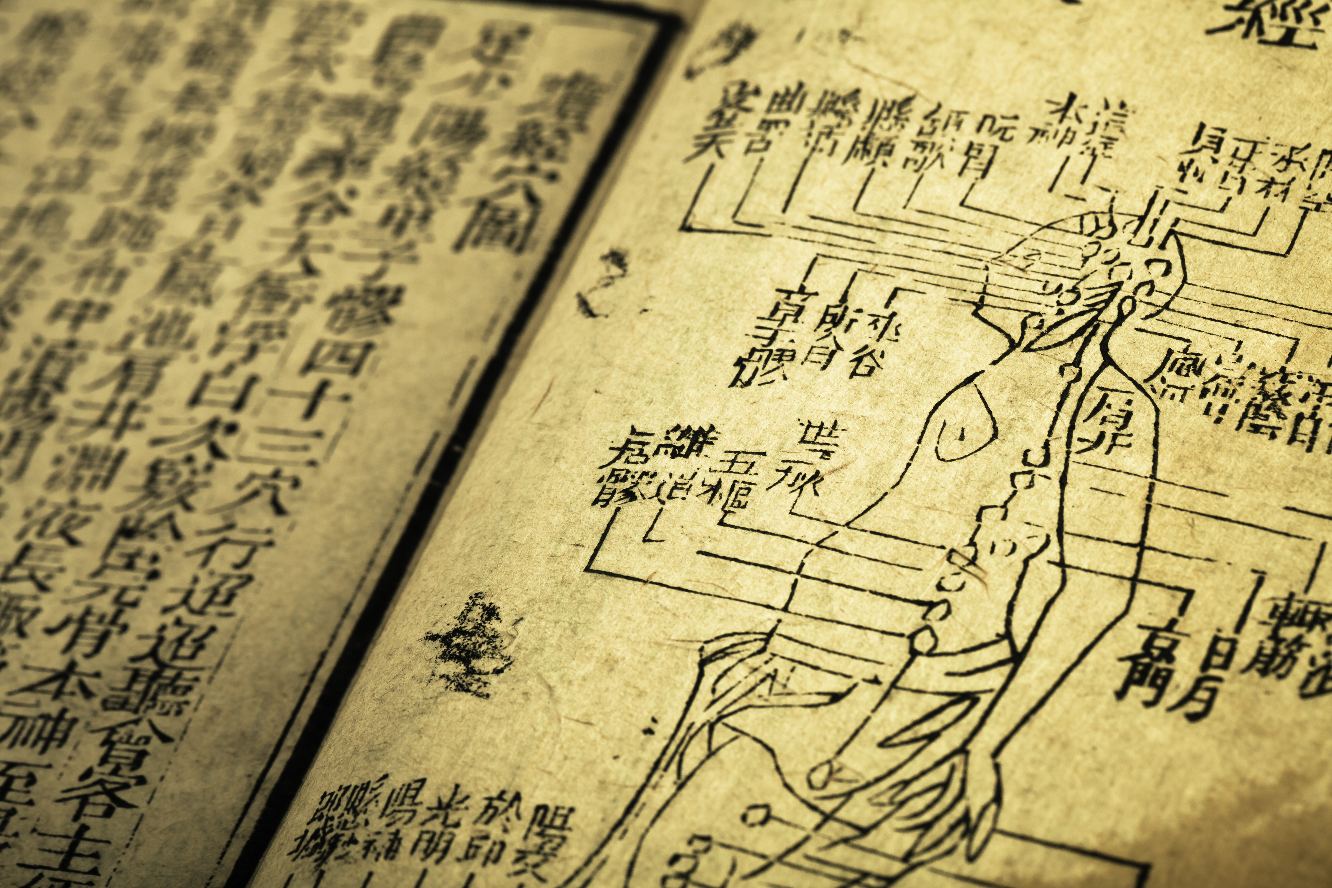 agopuntura marco capuzzo old medicine book from Qing Dynasty