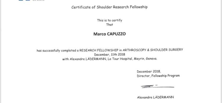 Research fellowship in arthroscopy and shoulder surgery